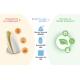 Sensor Ambiental Inteligente WIFI by Broadlink